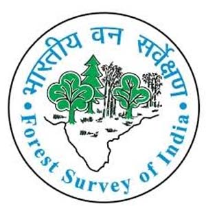 FSI Recruitment 2021