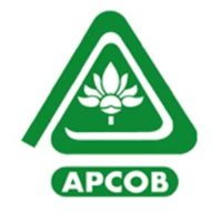 APCOB Recruitment 2020