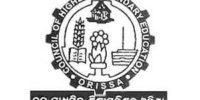 Orissa Results CHSE +2  2021 @5 PM, Check Orissa CHSE +2 Result/ Download Odisha Board 12th Science & Commerce Result Link @ chseodisha.nic.in
